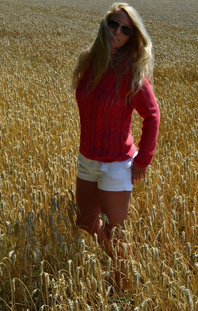 in the cornfield
